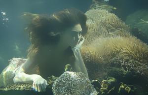 h2o_mermaids_by_white02-d8upkfc